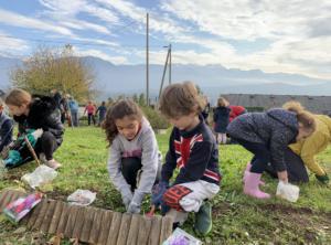 Read more about the article Jardin : lieu de biodiversité
